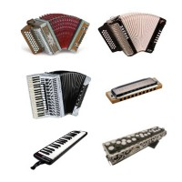 Accordion / Harmonica / Pianica