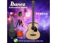 Ibanez  PCBE12-OPN Open Pore Natural 4 String Acoustic Bass Guitar (PCBE12)
