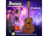 Ibanez PNB14E-OPN Open Pore Natural  Acoustic-Electric Bass Parlor Body (PNB14E)