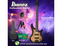 Ibanez Gio GSR205SM-NGT Natural Gray Burst 5-string Bass Guitar (GSR205SM)