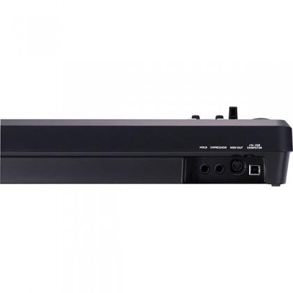 Roland A-49 49 Key USB MIDI Keyboard Controller (A49 A 49)